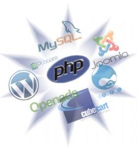 Custom PHP web application development versus RAD frameworks and CMS